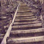 「ダイヤモンドトレール/その1(ダイトレ北入口 屯鶴峯穴虫峠〜金剛山山頂まで)」縦走・登山道・登山ルート・アクセスなどの解説
