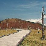 「日出ヶ岳(大台ヶ原・台高山脈)」登山ルート・登山道・登山コース・登山口・駐車場・アクセス・登山日記など役立つ解説