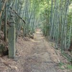 「高野山町石道」トレッキング!登山ルート・登山道・登山コース・登山口・駐車場・アクセス・登山日記など役立つ解説