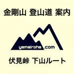 どこよりも詳しいトレッキングルートガイド!金剛山「伏見峠 下山ルート」をわかりやすく解説(登山ルート・登山道)