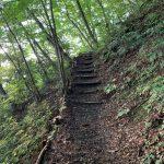どこよりも詳しいトレッキングルートガイド!岩湧山「きゅうざかの道 登山ルート」をわかりやすく解説/岩湧寺付近から登山